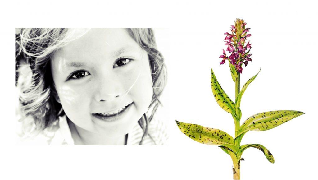 Hoogsensitieve kinderen zijn als orchideeën